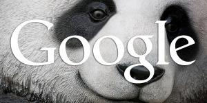 Segera Cek Rank Websitemu! Google Rilis Alogaritma Google Panda 4.1!