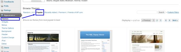 Ganti Theme Website atau Blog Sekarang Gampang, Tinggal Klik. Tapi ...